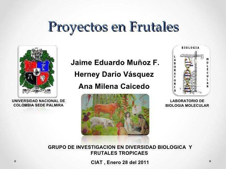 Proyectos en Frutales  Jaime Eduardo Muñoz F. Herney Darío Vásquez  Ana Milena Caicedo  UNIVERSIDAD NACIONAL DE COLOMBIA S...