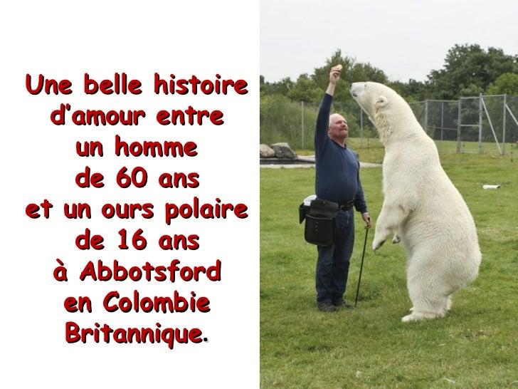 Une belle histoire d'amour entre un homme de 60 ans et un ours polaire de 16 ans à Abbotsford en Colombie Britannique .