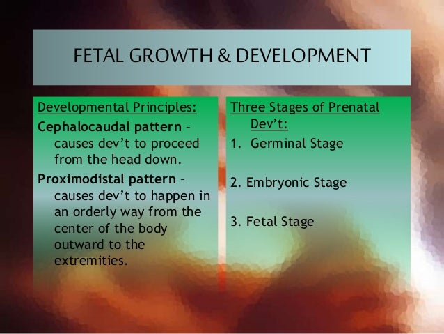 FETALGROWTH& DEVELOPMENT Developmental Principles: Cephalocaudal pattern – causes dev't to proceed from the head down. Pro...