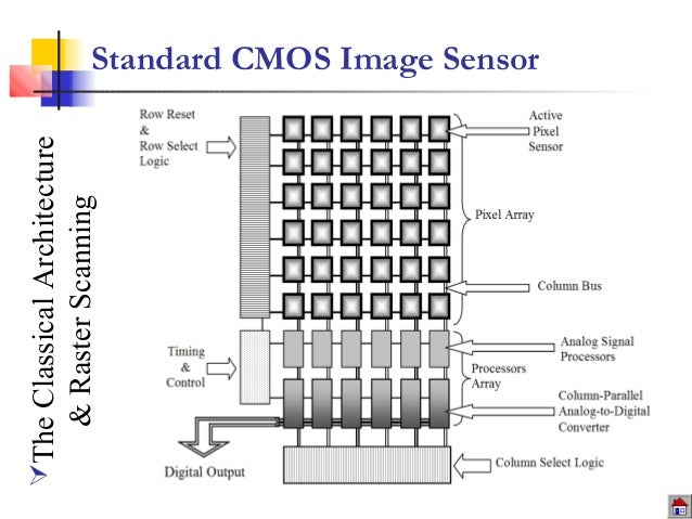 from biological to smart cmos imaging  architectural approach