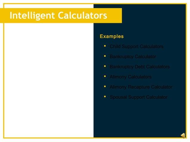 Intelligent Calculators                     Examples                       Child Support Calculators                     ...