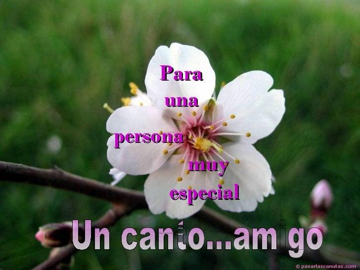 Para una persona muy especial Un canto...amigo