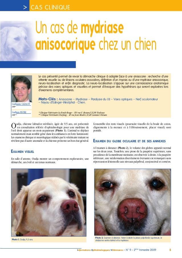 Pupilles du chien: mydriase, myosis et anisocorie Un-cas-de-mydriase-anisocorique-chez-un-chien-cazalot-iovs-2009-1-638