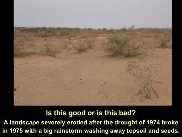 Is this good or is this bad?A landscape severely eroded after the drought of 1974 brokein 1975 with a big rainstorm washin...