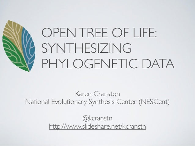 OPEN TREE OF LIFE:     SYNTHESIZING     PHYLOGENETIC DATA                 Karen CranstonNational Evolutionary Synthesis Ce...