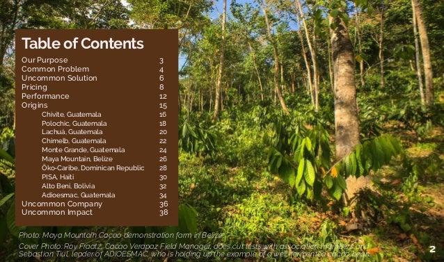 Uncommon cacao Slide 2