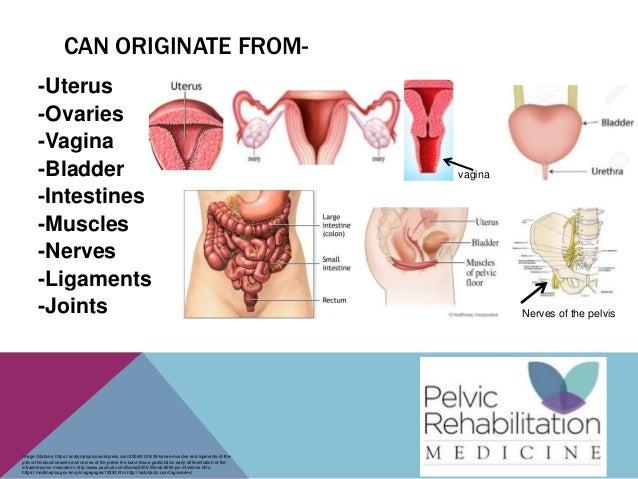 Vaginal and pelvic pain