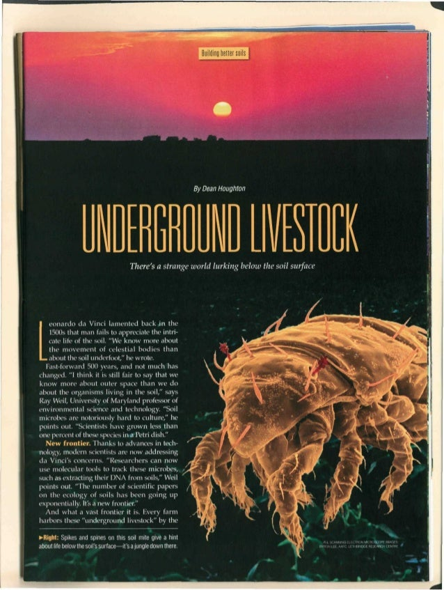 Underground livestock