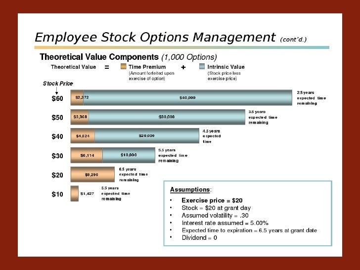 Understanding company stock options