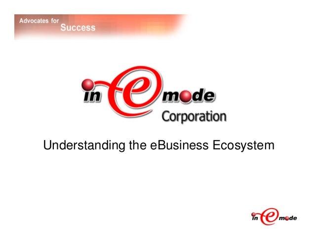 Understanding the eBusiness Ecosystem