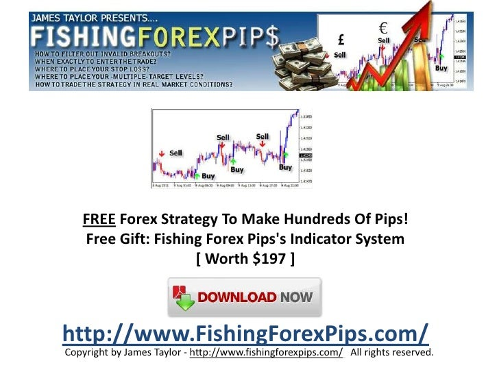Understanding pips in forex trading