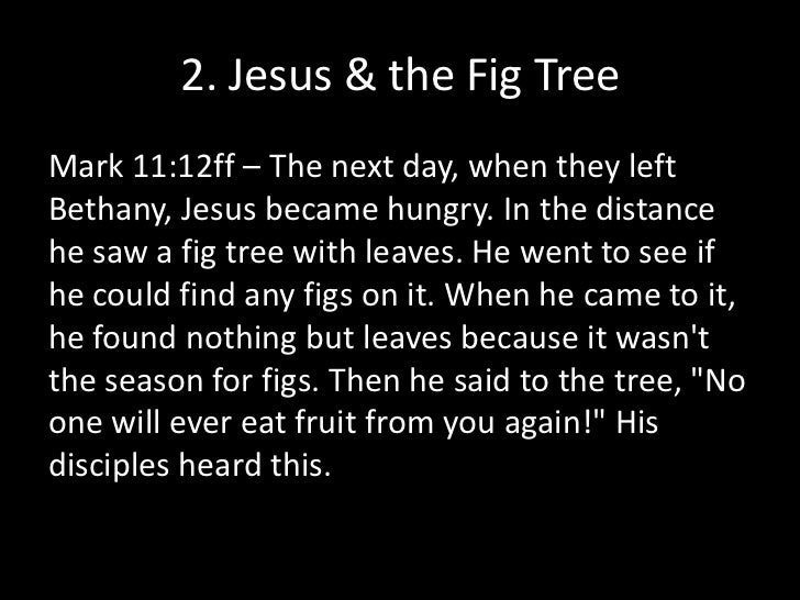 2. Jesus & the Fig Tree<br />Mark 11:12ff – The next day, when they left Bethany, Jesus became hungry. In the distance he ...