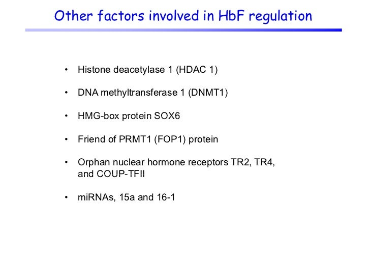Other factors involved in HbF regulation •   Histone deacetylase 1 (HDAC 1) •   DNA methyltransferase 1 (DNMT1) •   HMG-bo...