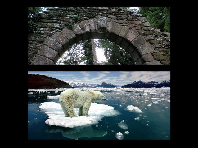 If you think information architecture hasn't changed since the polar bear, you're simply not paying attention.