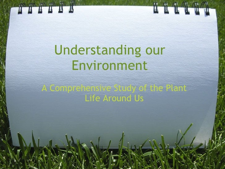 Understanding our Environment A Comprehensive Study of the Plant Life Around Us