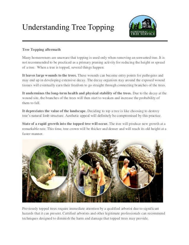 Understanding Tree Topping Tree Topping aftermath Many homeowners are unaware that topping is used only when removing an u...