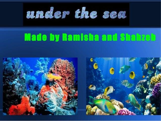 Made by Ramisha and Shahzeb