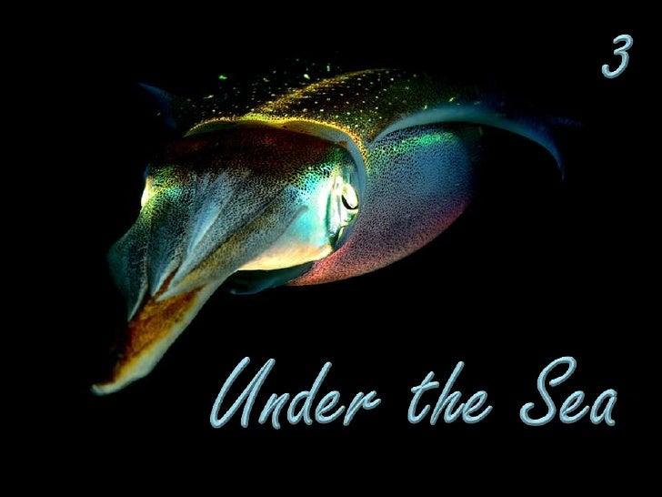 3<br />Under the Sea<br />