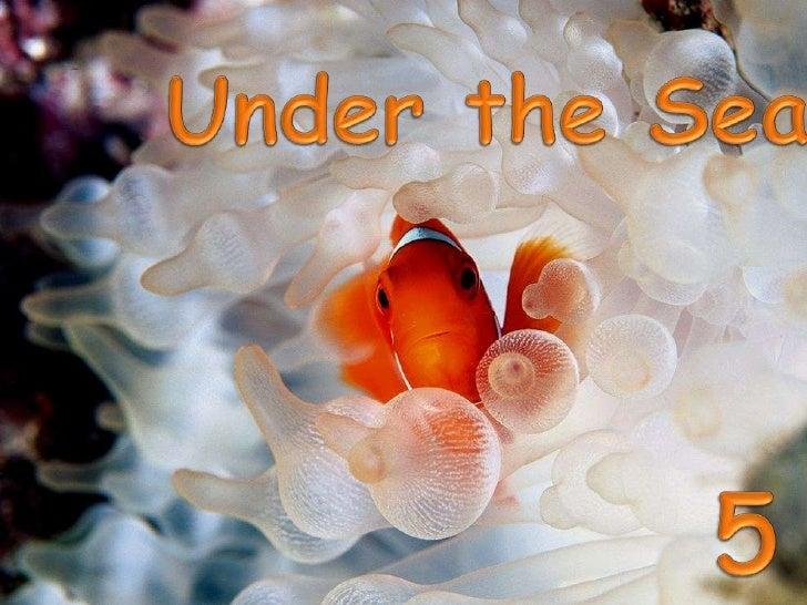 Under the Sea<br />5<br />