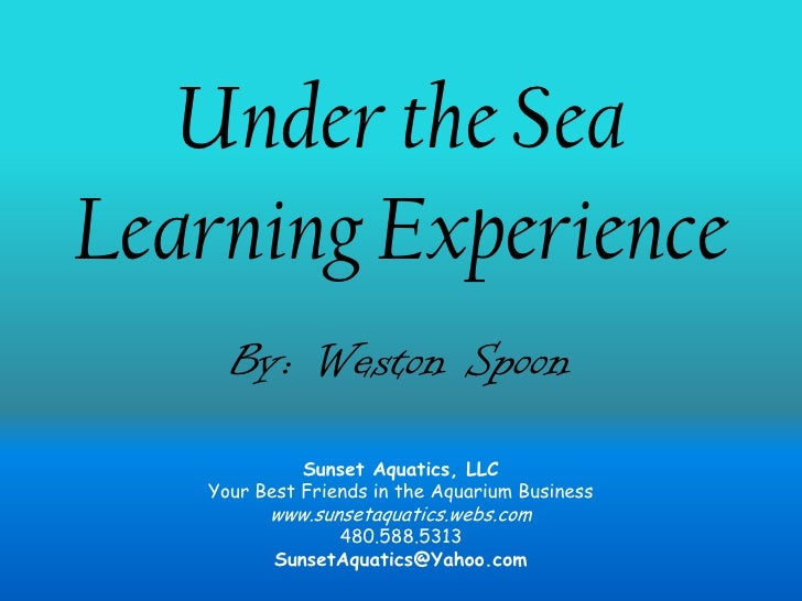 """Under the SeaLearning Experience <br />Inspired and Themed by Pixar's """"Finding Nemo""""<br />"""