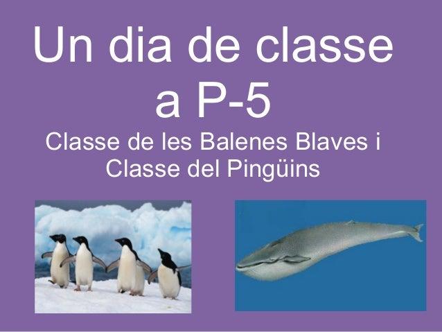 Un dia de classe a P-5 Classe de les Balenes Blaves i Classe del Pingüins