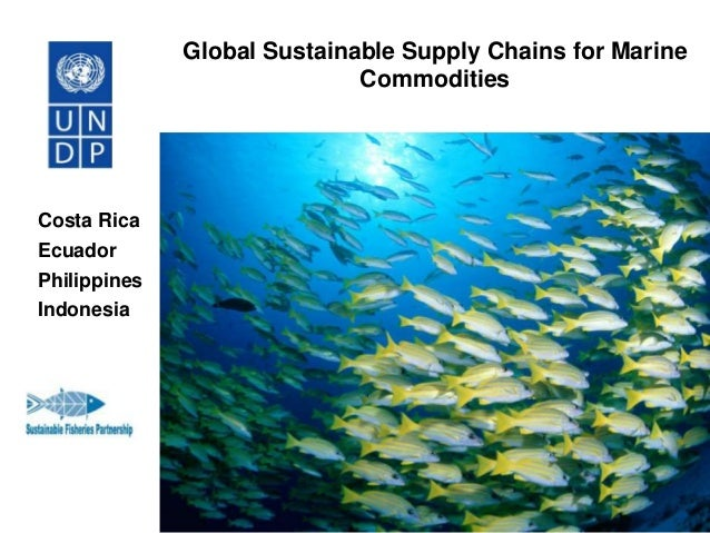 Global Sustainable Supply Chains for Marine Commodities  Costa Rica Ecuador Philippines Indonesia