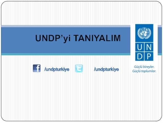 UNDP ne yapar?/undpturkiye