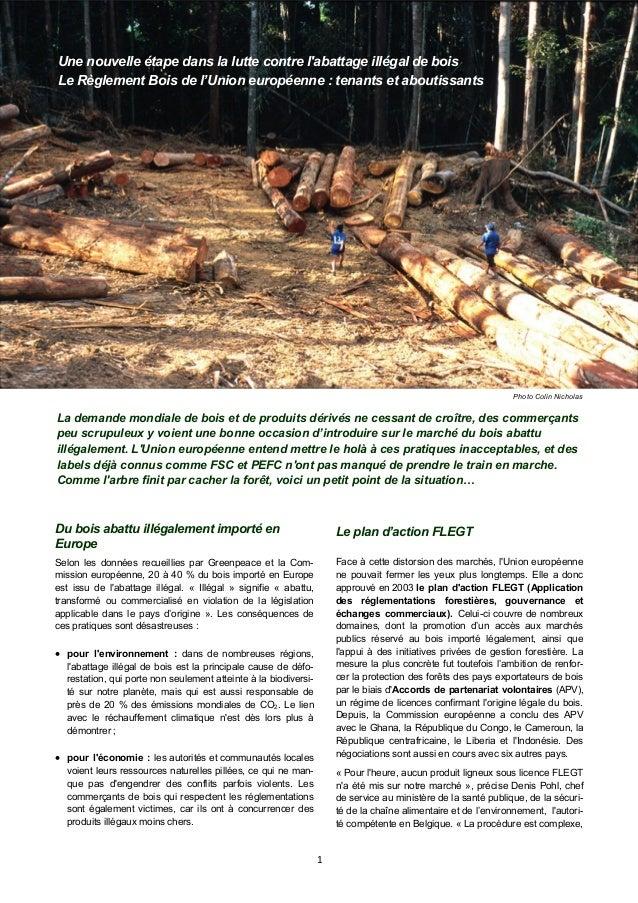 1 Une nouvelle étape dans la lutte contre l'abattage illégal de bois Le Règlement Bois de l'Union européenne : tenants et ...