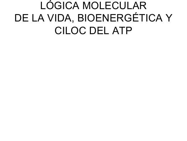 LÓGICA MOLECULAR DE LA VIDA, BIOENERGÉTICA Y CILOC DEL ATP