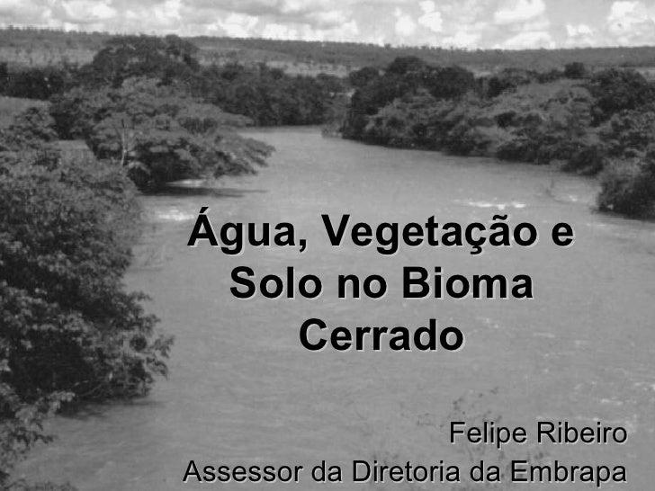 Água, Vegetação e  Solo no Bioma     Cerrado                      Felipe Ribeiro Assessor da Diretoria da Embrapa