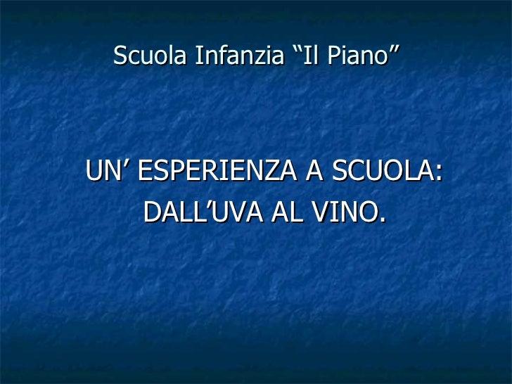 """Scuola Infanzia """"Il Piano"""" UN' ESPERIENZA A SCUOLA: DALL'UVA AL VINO."""