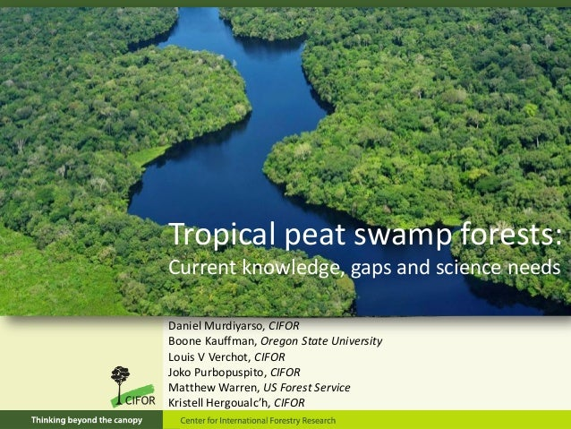 Tropical peat swamp forests: Current knowledge, gaps and science needs Daniel Murdiyarso, CIFOR Boone Kauffman, Oregon Sta...
