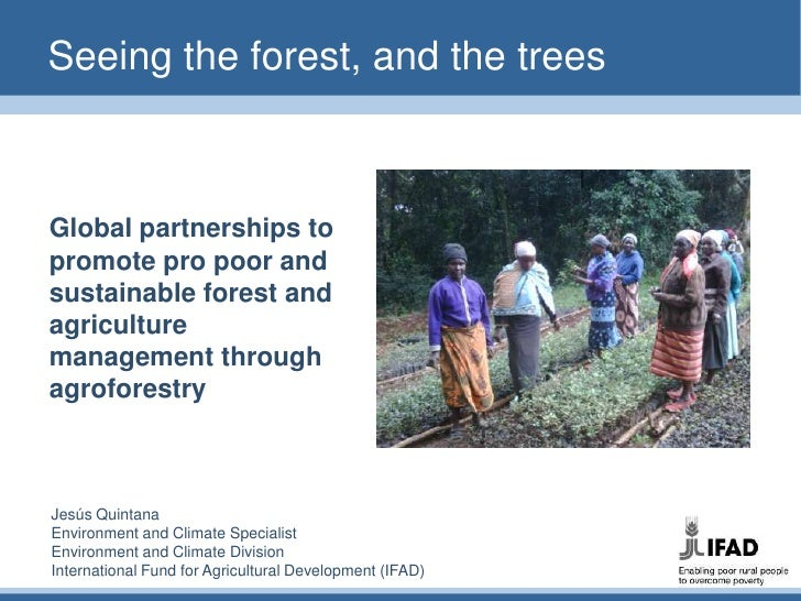 Seeing the forest, and the trees<br />Global partnerships to promote pro poor and sustainable forest and agriculture manag...