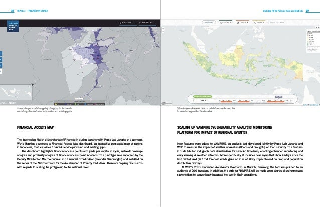 28 29TRACK 1 – INNOVATION DRIVER Building Fit-for-Purpose Tools and Methods FINANCIAL ACCESS MAP The Indonesian National S...