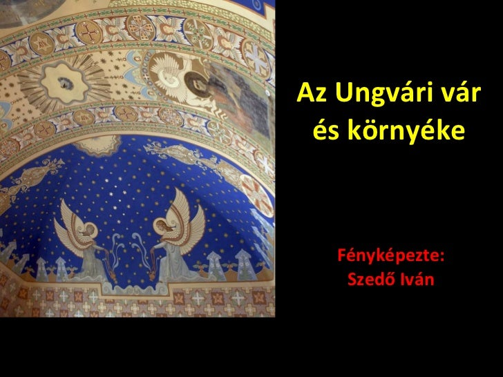 Az Ungvári vár és környéke Fényképezte: Szedő Iván