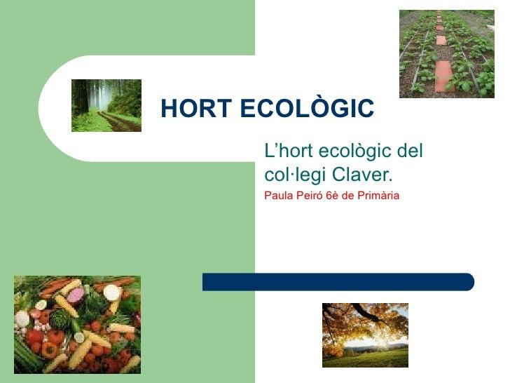 HORT ECOLÒGIC L'hort ecològic del col·legi Claver. Paula Peiró 6è de Primària