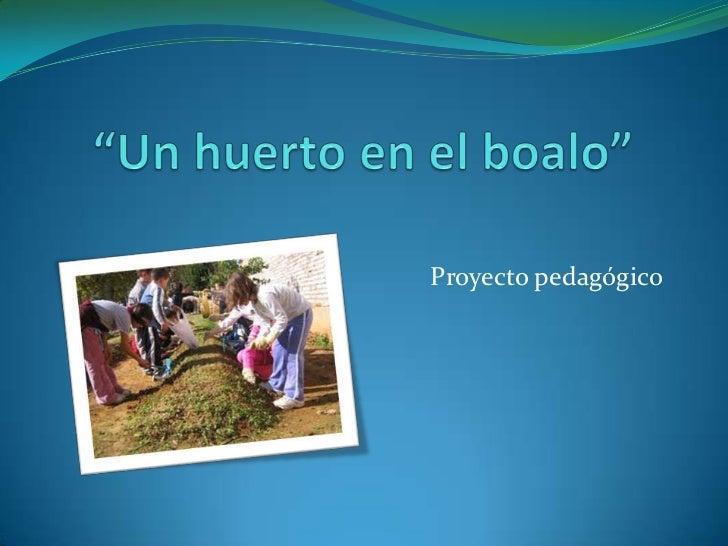 """""""Un huerto en el boalo""""<br />Proyecto pedagógico<br />"""