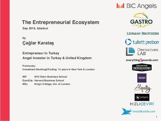 1 The Entrepreneurial Ecosystem Sep 2016, Istanbul by Çağlar Karataş Entrepreneur in Turkey Angel Investor in Turkey & Uni...