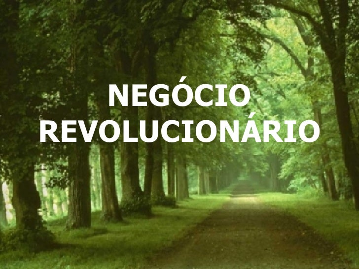 NEGÓCIO REVOLUCIONÁRIO