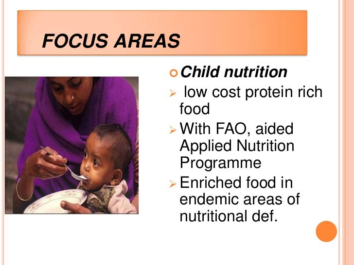 FOCUS AREAS           Child   nutrition           low cost protein rich            food           With FAO, aided      ...