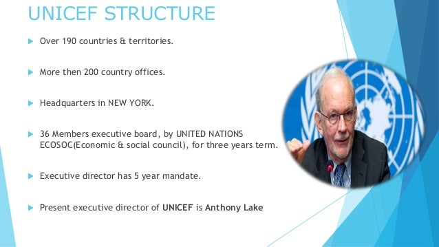 organisation structure unicef The study showed that the organizational structure helped unicef to implement its strategies effectively the organization's structure served as a basis for orchestrating the organizational activities and it promoted specialization of labor to encourage efficiency and minimize the need for an elaborate control system.