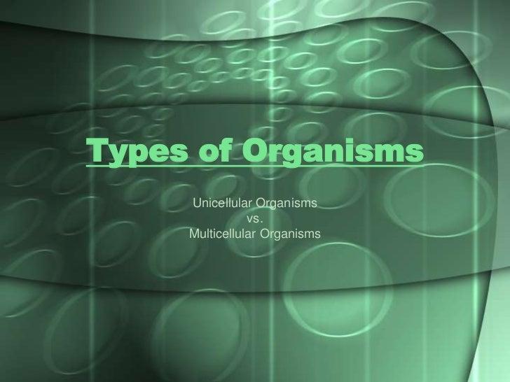Types of Organisms     Unicellular Organisms                vs.     Multicellular Organisms