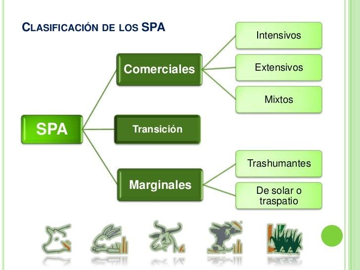 SPA Marginales<br />Autoconsumo<br />Mano de obra familiar<br />Fuera de la economía formal<br />No participa en las caden...