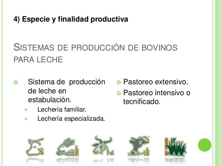 La producción es estacional.