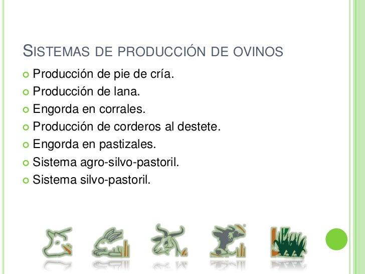 Sistemas de producción de bovinos para carne.<br />Sistema de producción vaca becerro (becerros al destete).<br />Sistema ...