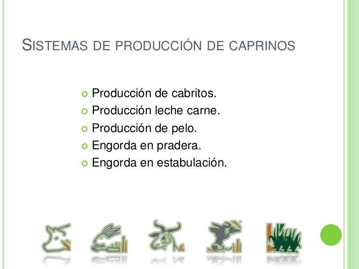 Sistema de producción de vaca-leche-cría (doble propósito).<br />