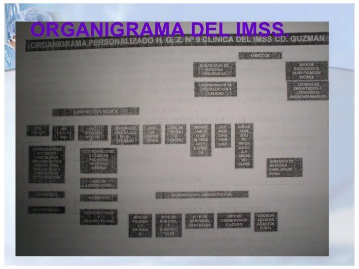 ORGANIGRAMA DEL IMSS.