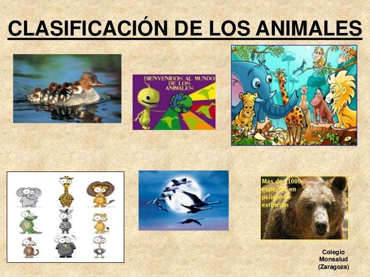 La clasificación de los animales