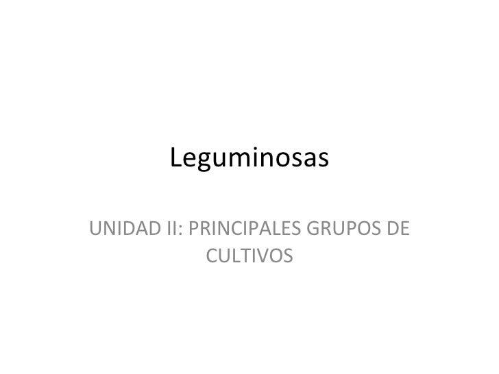 Leguminosas UNIDAD II: PRINCIPALES GRUPOS DE CULTIVOS