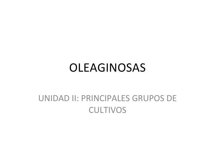 OLEAGINOSAS UNIDAD II: PRINCIPALES GRUPOS DE CULTIVOS